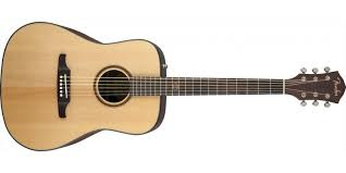 FENDER F-1000 DREADNOUGHT NATURAL.jpeg